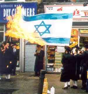 http://hugequestions.com/Eric/img/JewsBurnIsraeliFlag.JPG